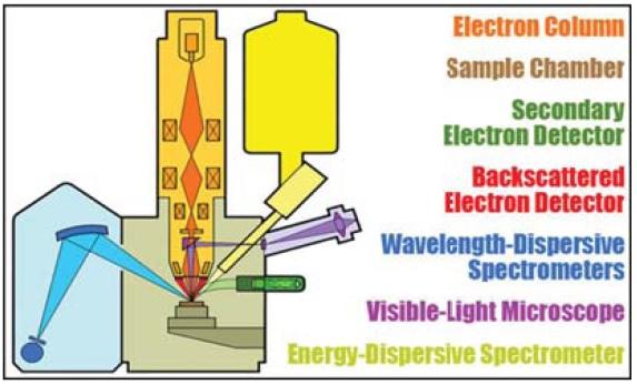 آنالیز نمونه ها با دستگاه الکترون پروب میکرو آنالایزر (EPMA)